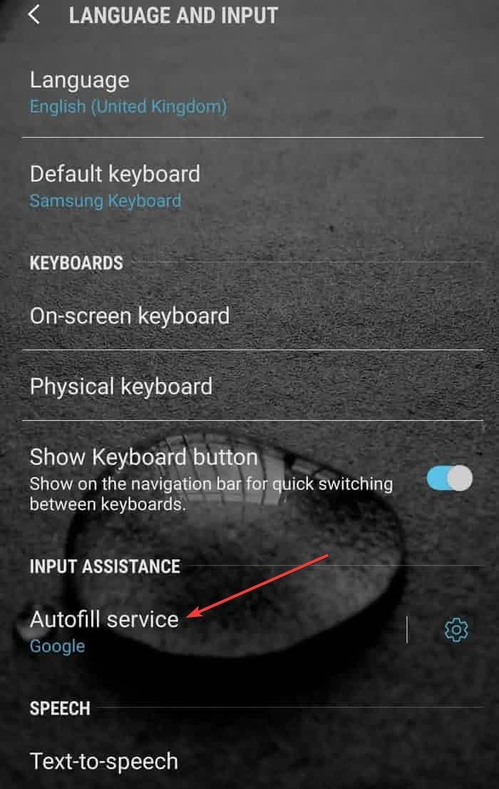 autofill-password-android-autofill-service