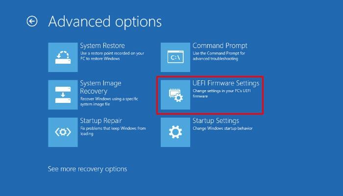 Recalbox Advanced Options Uefi