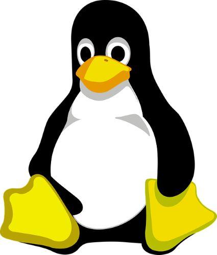 Windows Kernel Tux