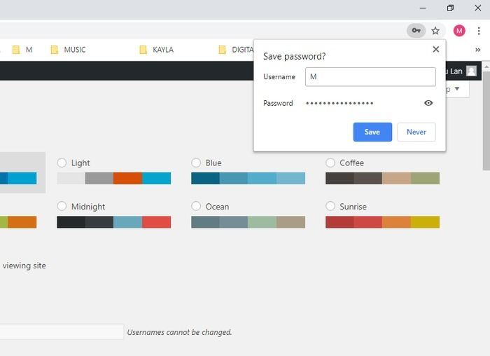 Browser Password Manager Chrome