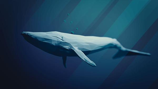 Moral Panics Blue Whale