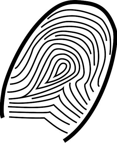 News Apple Touch Id Fingerprint