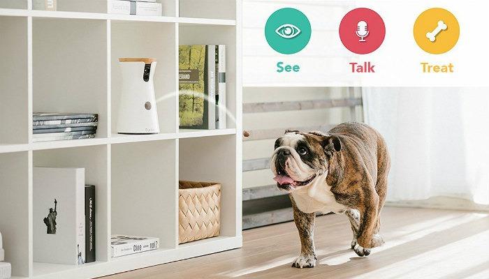 Pet Tech Furbo