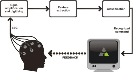 Bci Signal Processing
