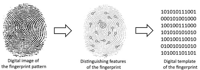 Fingerprint Scanners Analysis Encoding.png