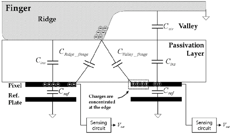 Fingerprint Scanners Capacitive Diagram
