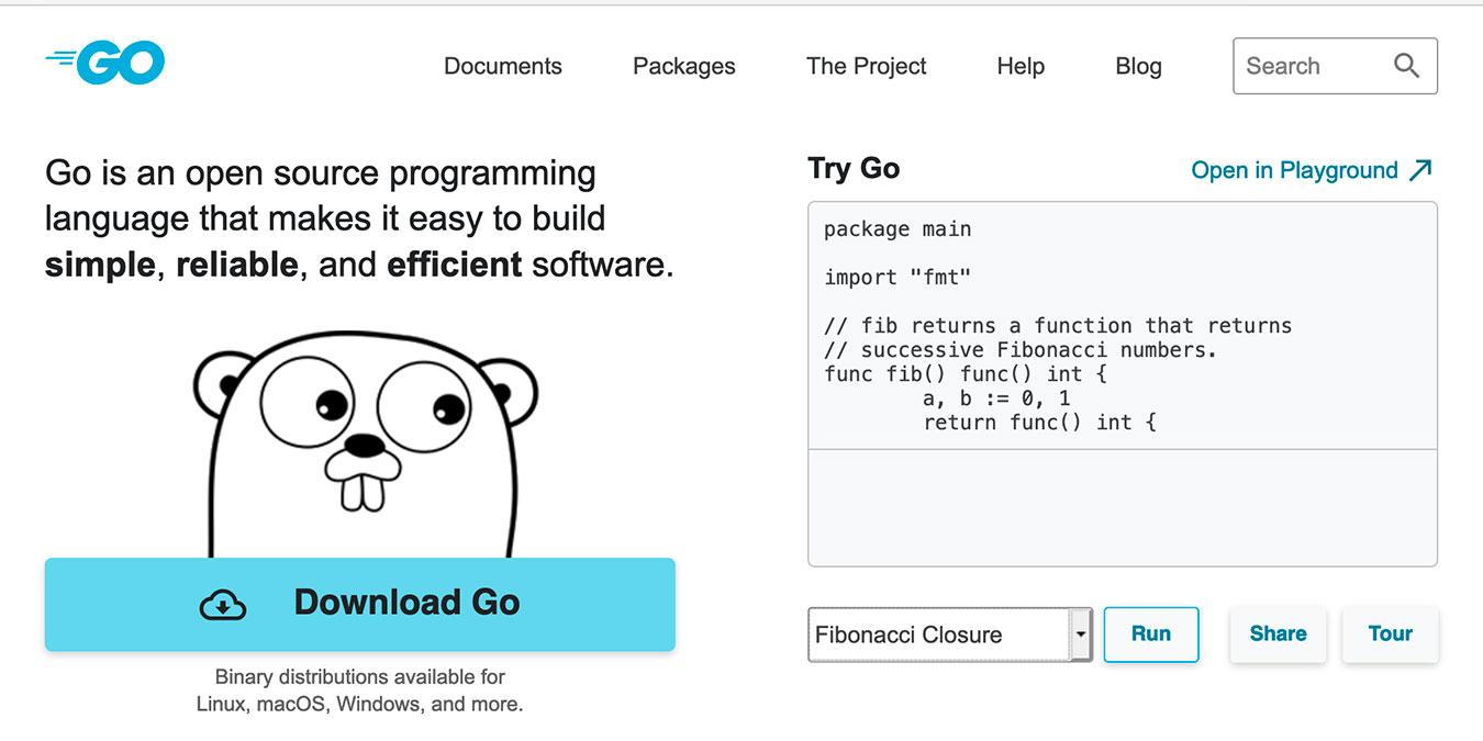 Golang Vs Java Go Website