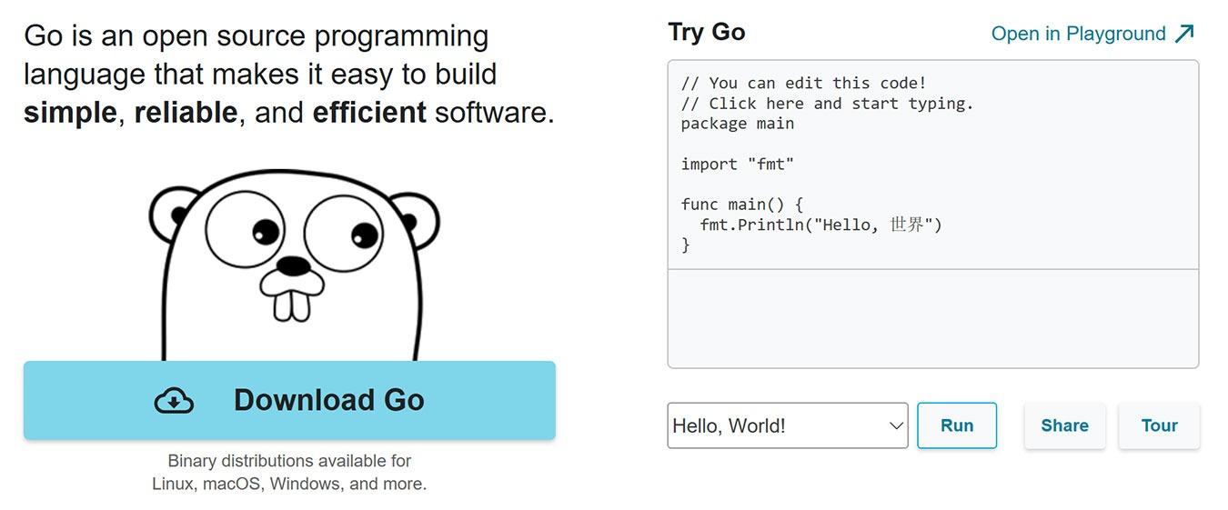 Golang Vs Python Go Website