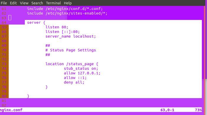 Nginx Status Code