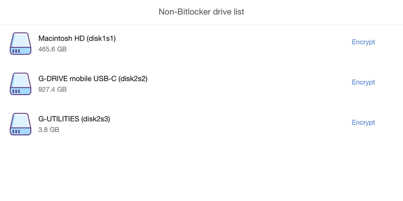M3 Bitlocker Loader Review Drive List