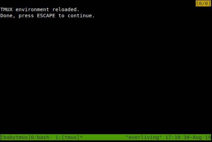 Tmux Plugin Install