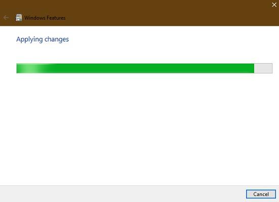 Applying Windows Features Iis