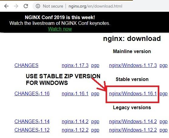 Download Nginx Windows Zip Version