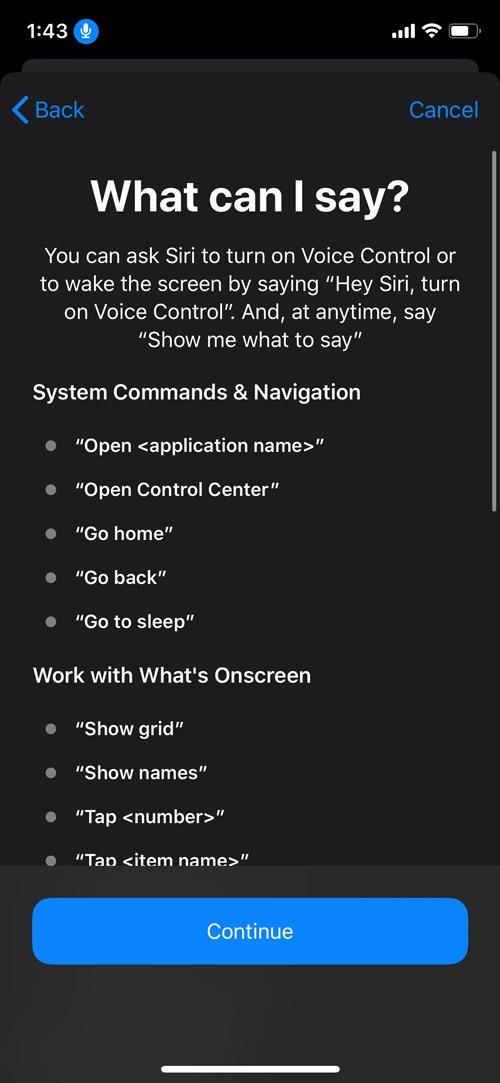 Enable Voice Control Ios Commands