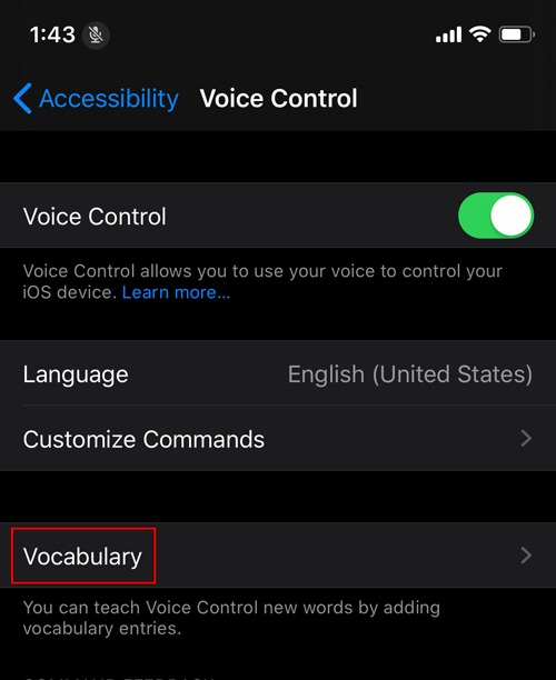 Enable Voice Control Ios Vocabulary
