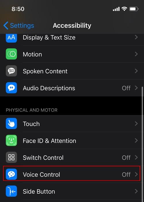 Enable Voice Control Ios Voice Control
