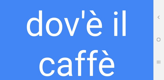 Google Translate App Full Screen Display