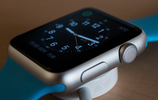 Which Smartwatch Holiday Season Apple Watch