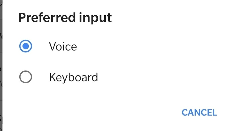 Preferred Voice Input