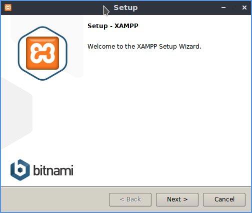 Linux Local Wp Xampp Installer