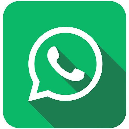 News Social Media Data Access Whatsapp
