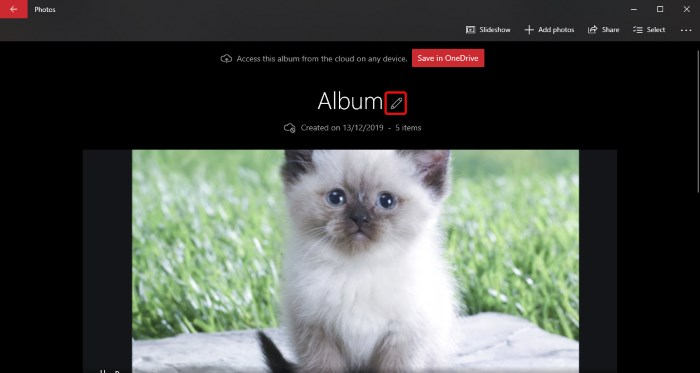 Windows Photos Name Album