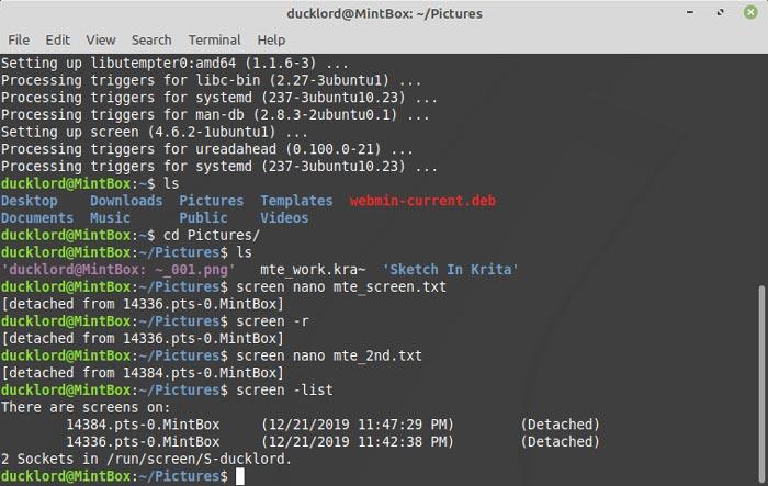 Screen Terminal Multitasking Session List