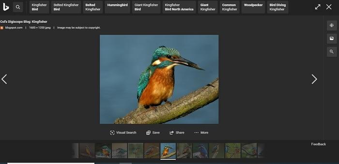 Bing أفضل من جوجل التمرير الأفقي للصور مع Bing