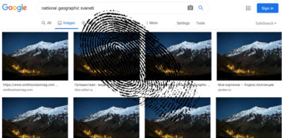 Reverse Image Search Feature