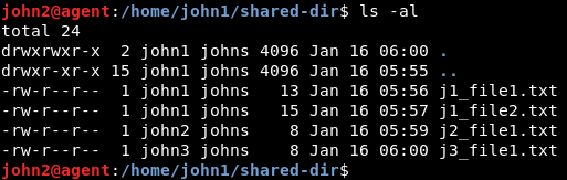 files in shared directory