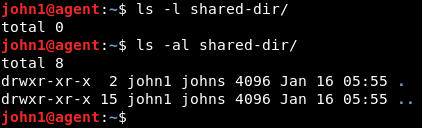 ls command on shared directory