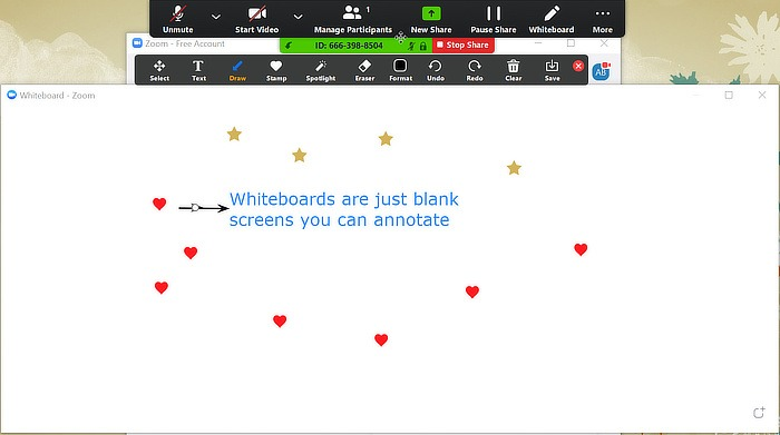 White Screen Blank