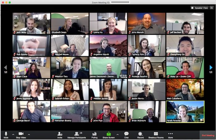 Skype مقابل Zoom Lockdown Group Video