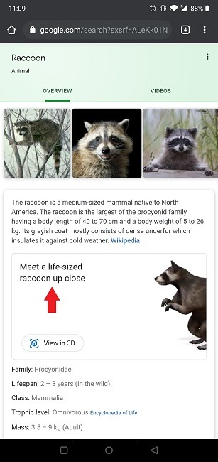 Google 3D ऑब्जेक्ट्स पशु को कैसे खोजें
