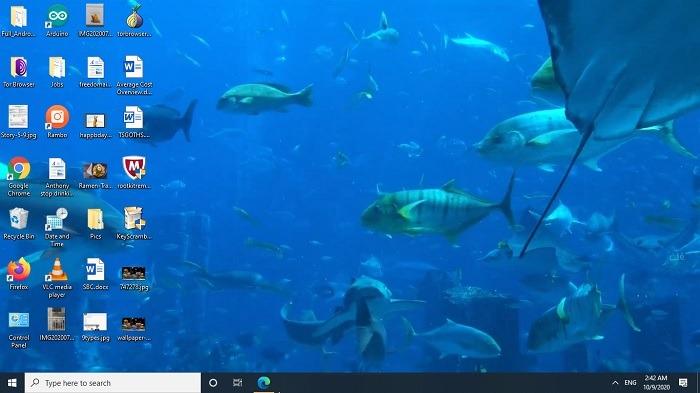أفضل خلفيات 4K Aquarium Full