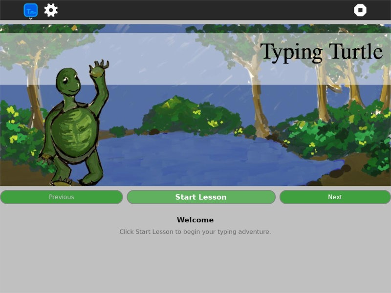 Sugar Typing Turtle