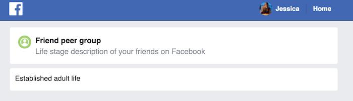 आप विशिष्ट फेसबुक खाते में डेटा की एक विस्तृत श्रृंखला शामिल है।