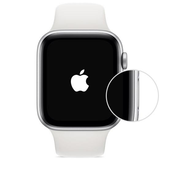 Temukan Semuanya Tombol Samping Apple Watch