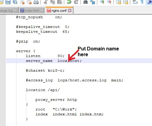 Nginx Windows Put Domain Name
