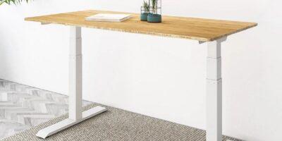 Flexispot Kana Bamboo Standing Desk Review Featured