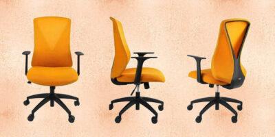 Flexi Chair Oka Office Chair Featured