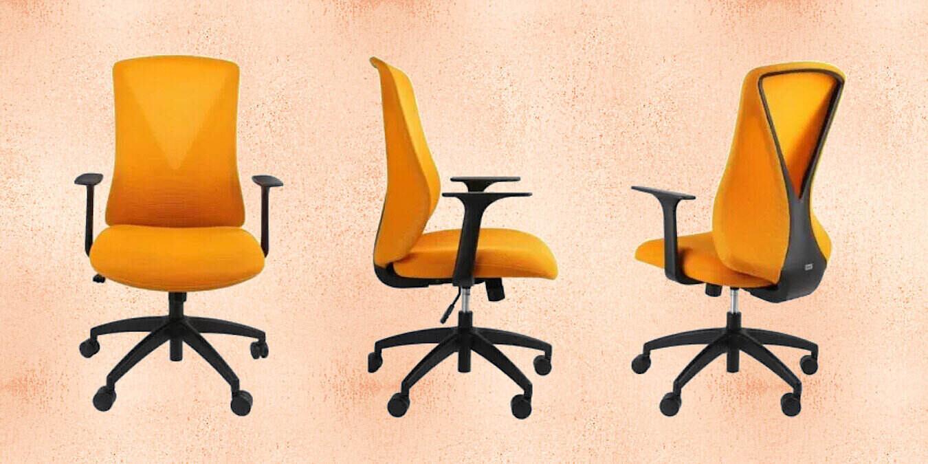 Flexispot Flexi-Chair Oka Office Chair BS9 Review